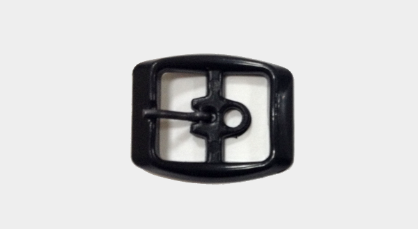 Pinned Buckle Models